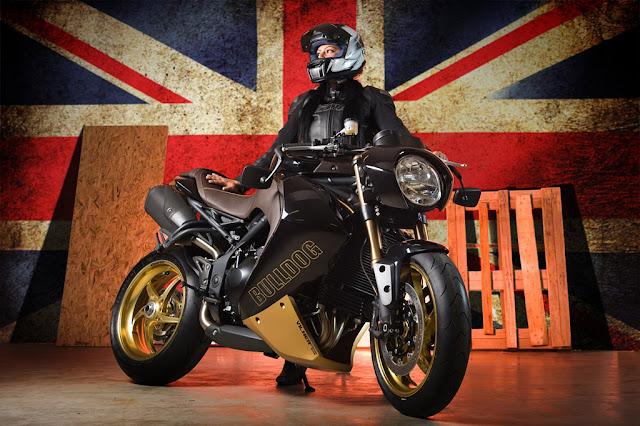 Vilner Triumph Speed Triple Bulldog