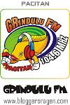 Grindulu FM 104.6 MHz Pacitan
