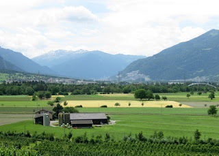 Golden field surrounded by green fields, mountains in the background, Switzerland.