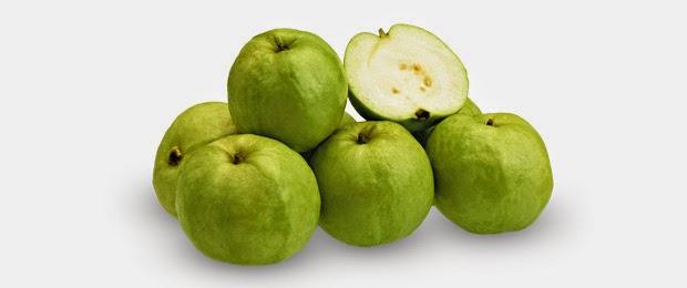 Guava Crystal Sunpride