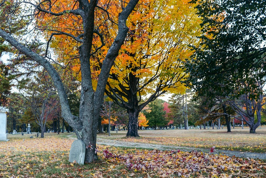 Portland, Maine USA October 2015 photo by Corey Templeton. a scenic spot in the historic Western Cemetery.