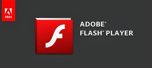 Adobe flash player prüfen