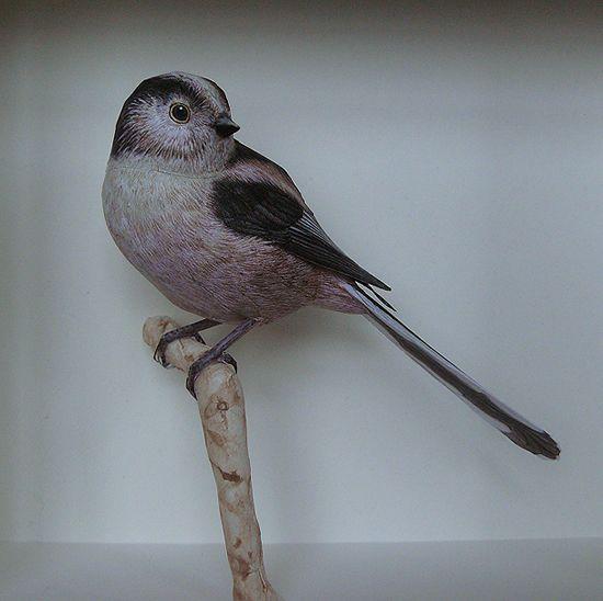 فنان يصنع طيور من الورق واقعية بشكل لا يصدق  Papercraft-birds5%5B1%5D