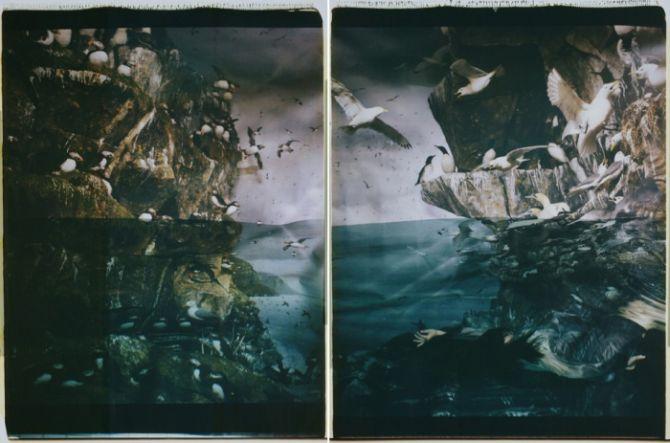 susanna majuri polaroid valokuva