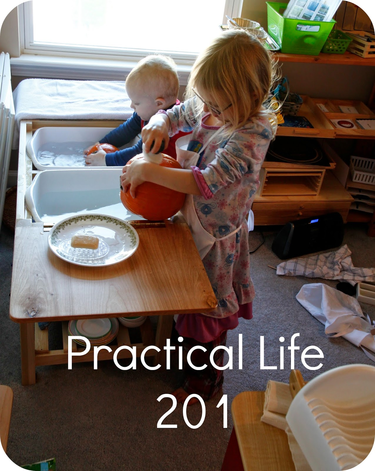 Practical Life 201