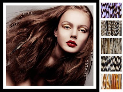 feather hair extensions colors. Feather Hair Extensions.