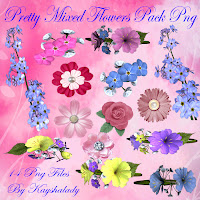 Pretty mixed flowers PNG tubes