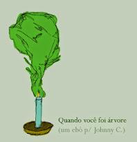 Quando você foi árvore