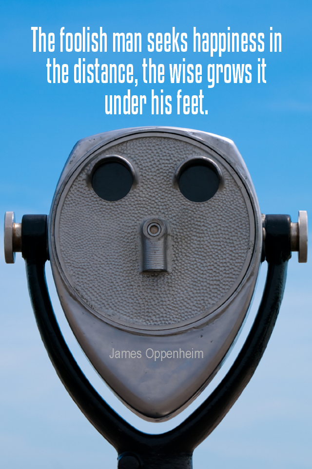 visual quote - image quotation for HAPPINESS - The foolish man seeks happiness in the distance, the wise grows it under his feet. - James Oppenheim