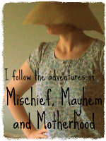 Mischief mayhem and motherhood blog badge