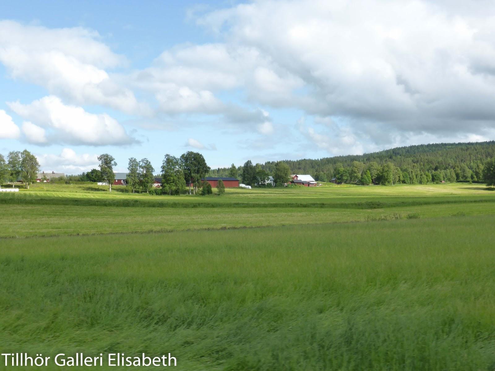 Trädgård Charlottenberg : Husbilen ellen arvika
