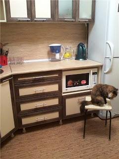 отремонтированная своими руками кухня, нижние полки
