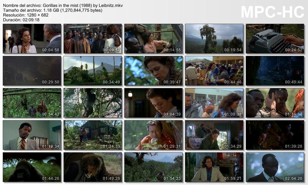 Gorilas en la niebla (1988) [Dual Lat-Ing] [Mg-MF]