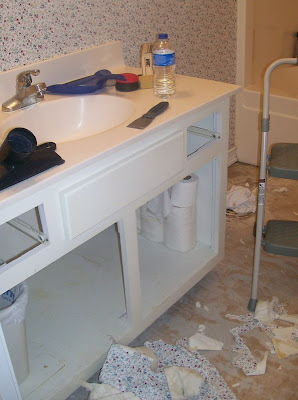 Midnight Water Leak Forces Family Into Bathroom Makeover
