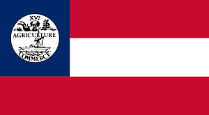 Fighting Under the Tennessee Flag