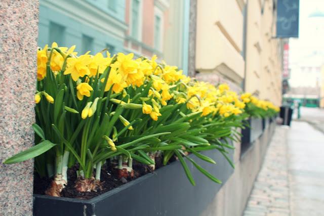 город Хельсинки Финляндия фото