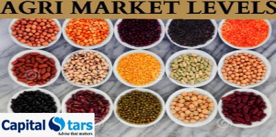Agri Commodity Tips, free agri calls, Chana Tips, Soyabean Tips, Dhaniya Tips, Turmeric Tips