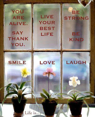 """You are alive. Say thank you. Live your best life. Be strong. Be Kind. Smile. Love. Laugh."" Picture of three flowers in pots in front a window."