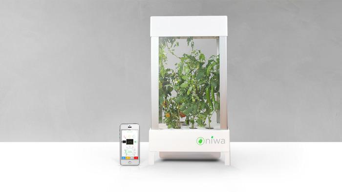 スマホで管理の近未来的家庭菜園「Niwa」がKickStarterで融資を募っているぞ!