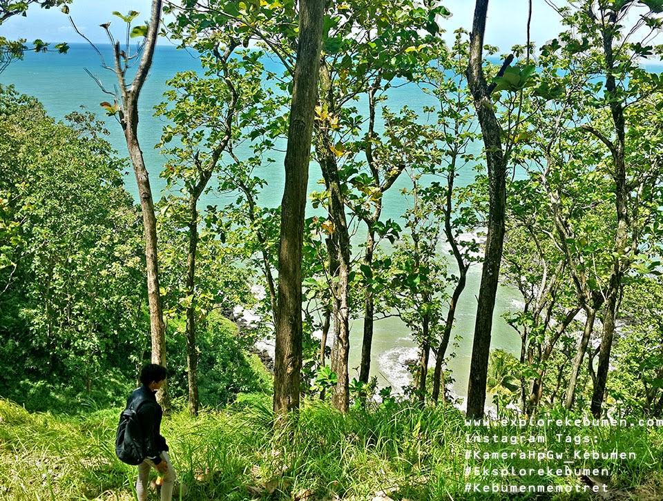 Jalan Menuju Pantai Karang Agung Kebumen
