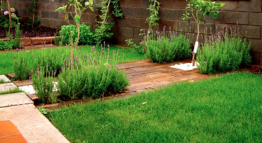 Carrot and co paso entre jardines for Jardines de lavanda
