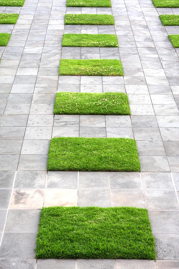 Serenity in the Garden: November 2012