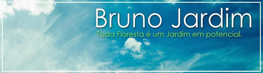 Bruno Jardim
