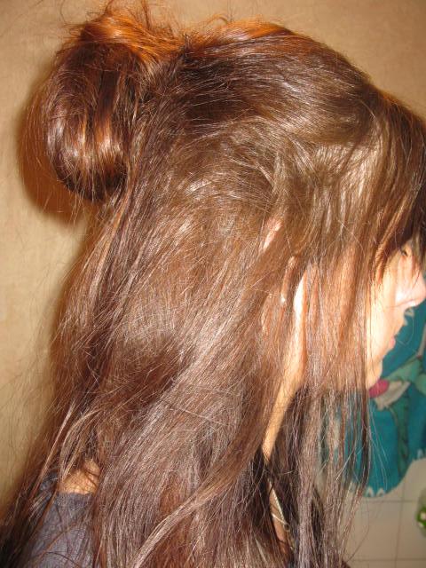 Le journal capillaire d 39 audrey des cheveux une pousse des soins chignon haut en demi queue - Demi queue chignon ...