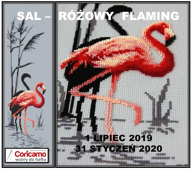 Różowy flaming