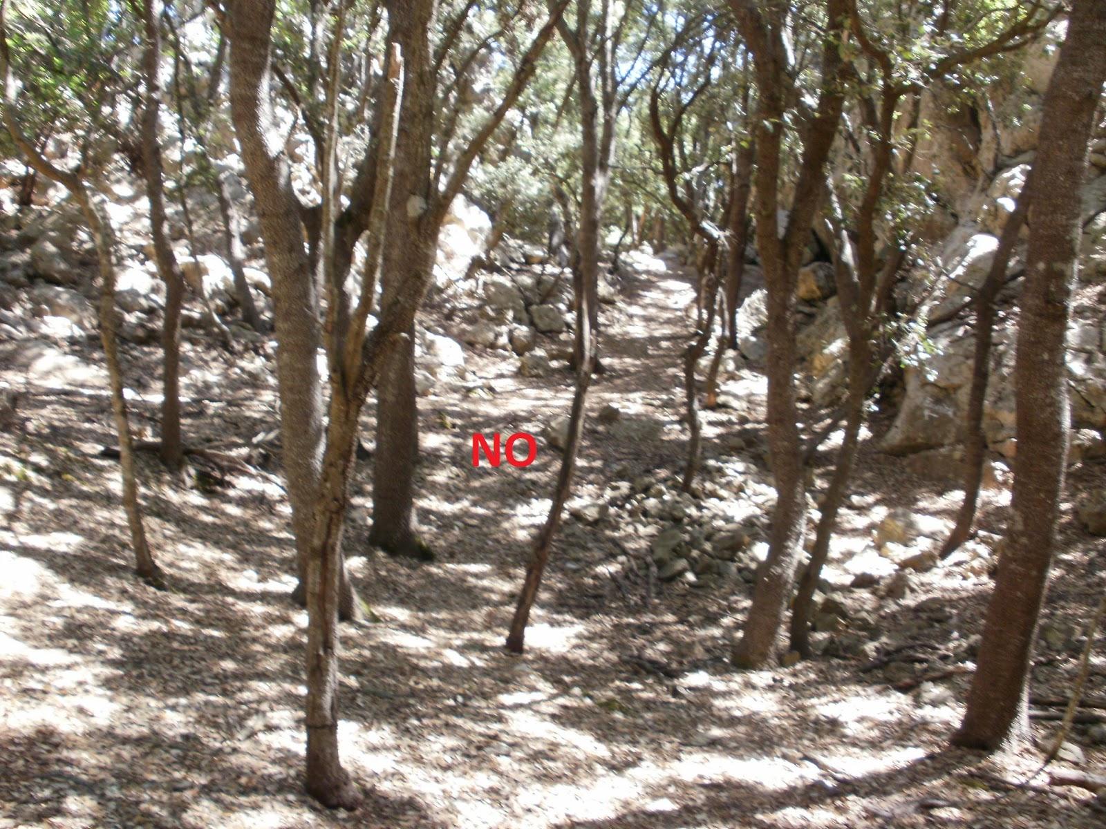 Mis días de montaña: Camí de s'Engegada i Pas de s'