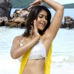 Ileana Latest Spicy Stills
