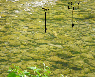 Dry fly target position