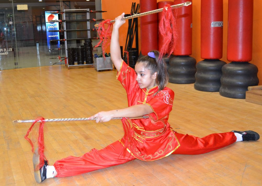 Cursos Kung-Fu Arte Marcial Chino, Maestro Senna - Información: tlf 626 992 139