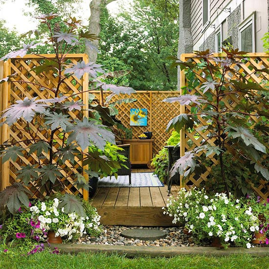 Dr dan 39 s garden tips landscaping for privacy for Creating privacy on patio