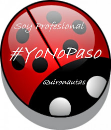 Iniciativa #YoNoPaso