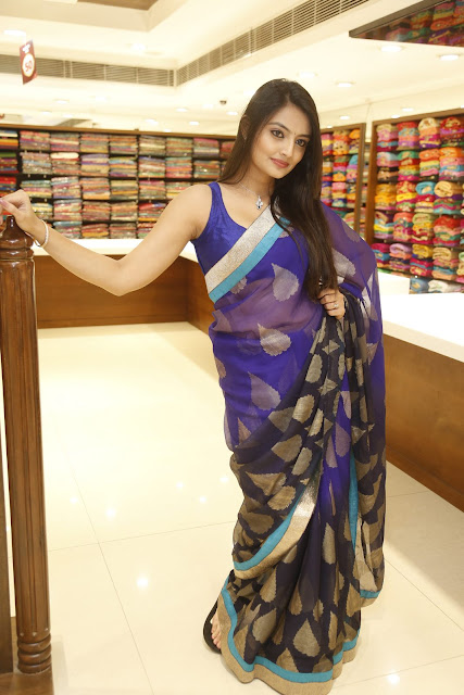 Actress Nikitha Narayan Saree Latest HD Images
