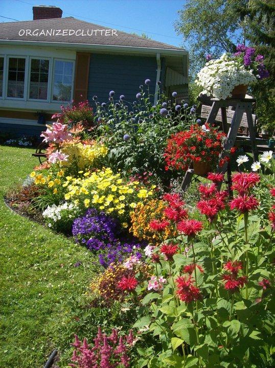 Annuals, Perennials, & Junk Garden Border www.organizedclutterqueen.blogspot.com