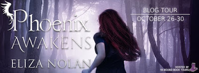 http://yaboundbooktours.blogspot.com/2015/10/blog-tour-sign-up-phoenix-awakens-by.html