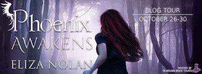 http://yaboundbooktours.blogspot.com/2015/10/blog-tour-sign-up-phoenix-awakens-by.html