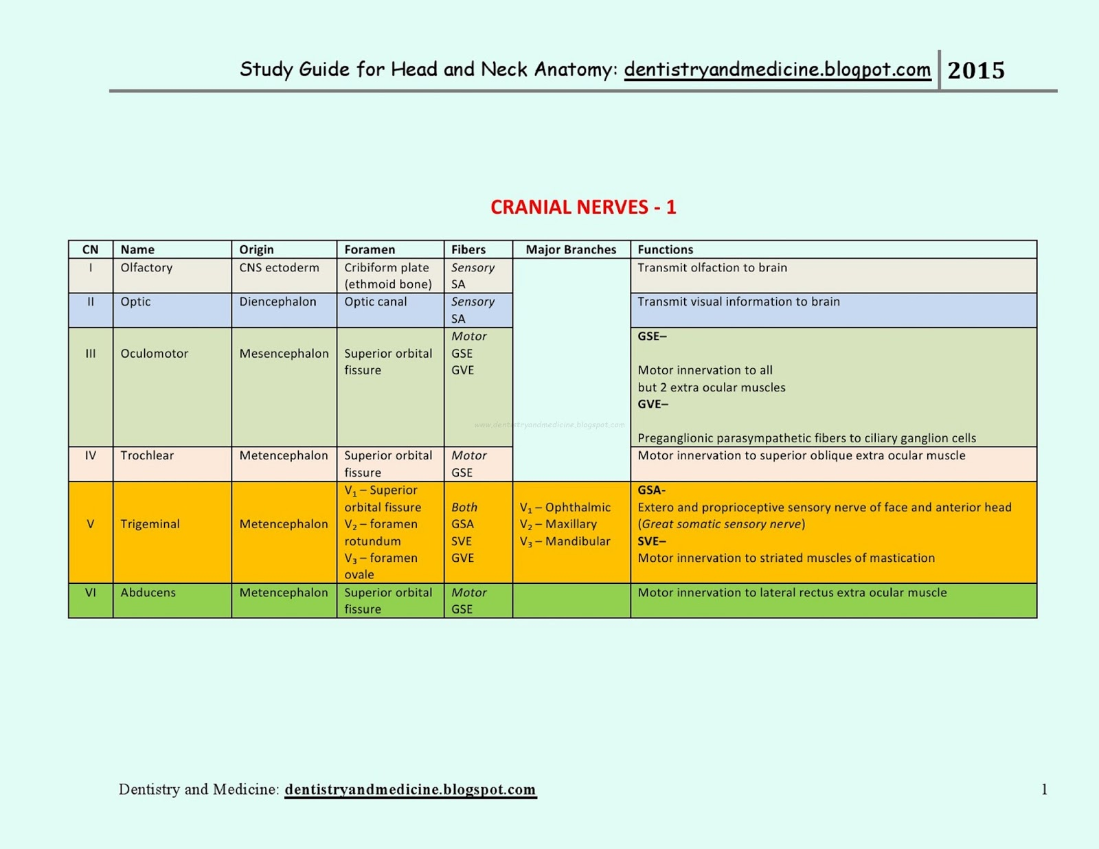 Mnemonics for head and neck anatomy