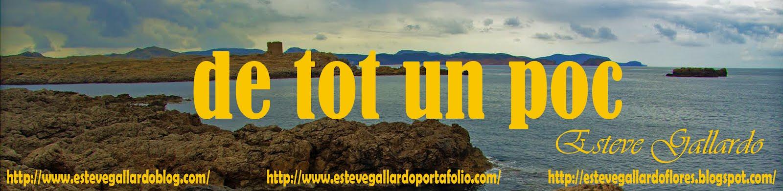 DE TOT UN POC D´EN ESTEVE GALLARDO