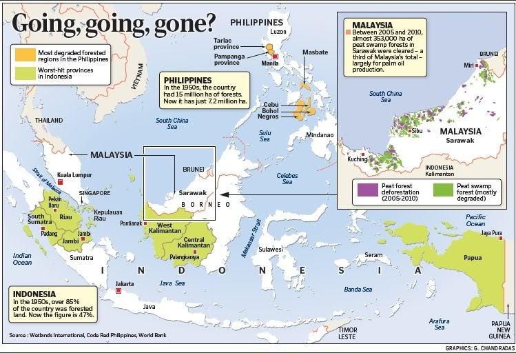 rainforest southeast asian Map for
