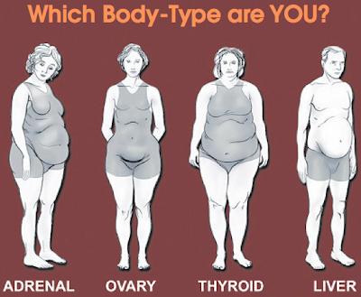 http://2.bp.blogspot.com/-ZU2naQys6IU/UapOS8iYkBI/AAAAAAAAAIw/kCYj2LupGdg/s1600/belly-fat.png