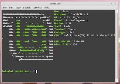 edit default terminal size linux mint