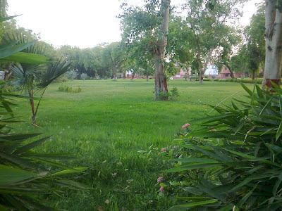 sardar open garden
