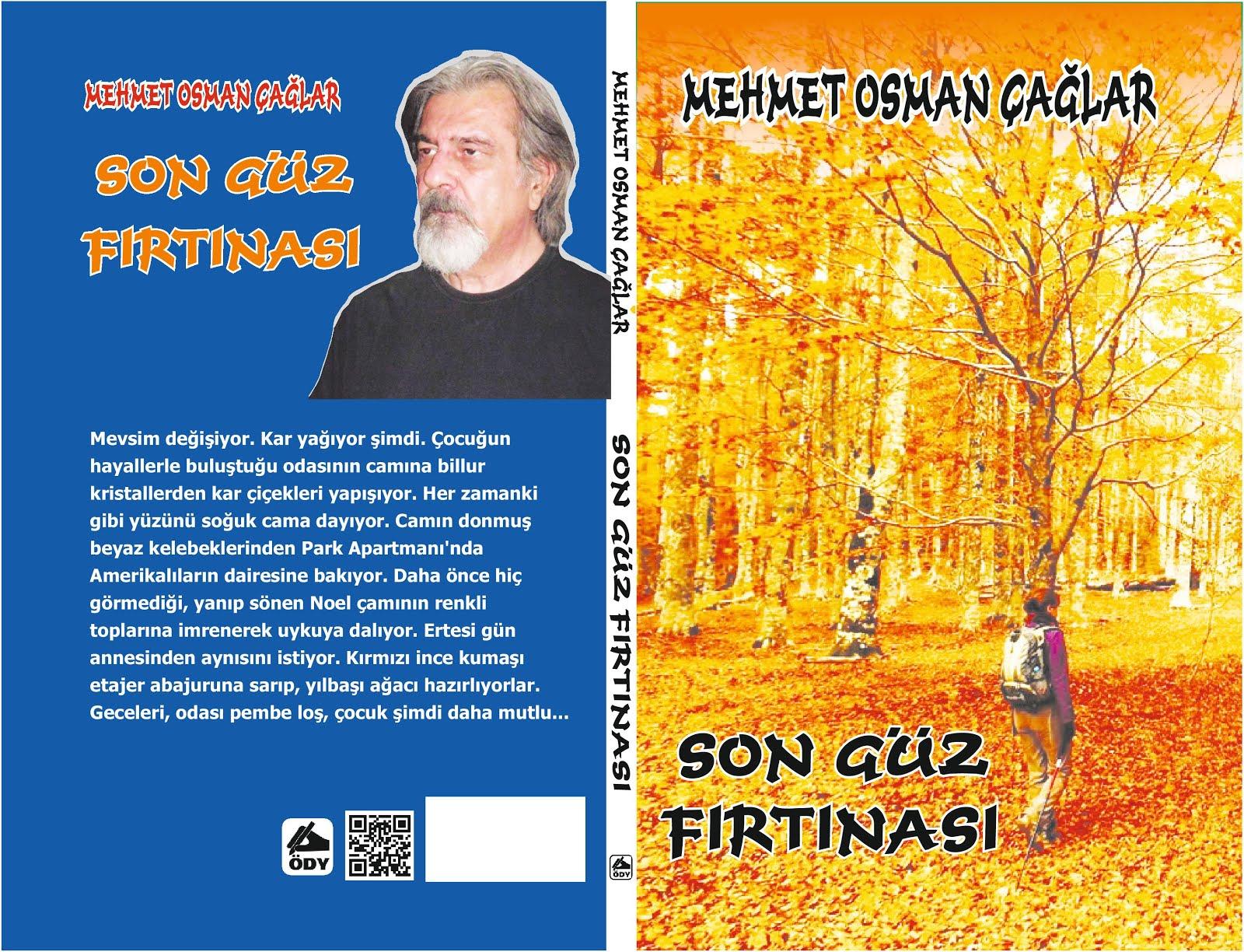 SON GÜZ FIRTINASI romanım