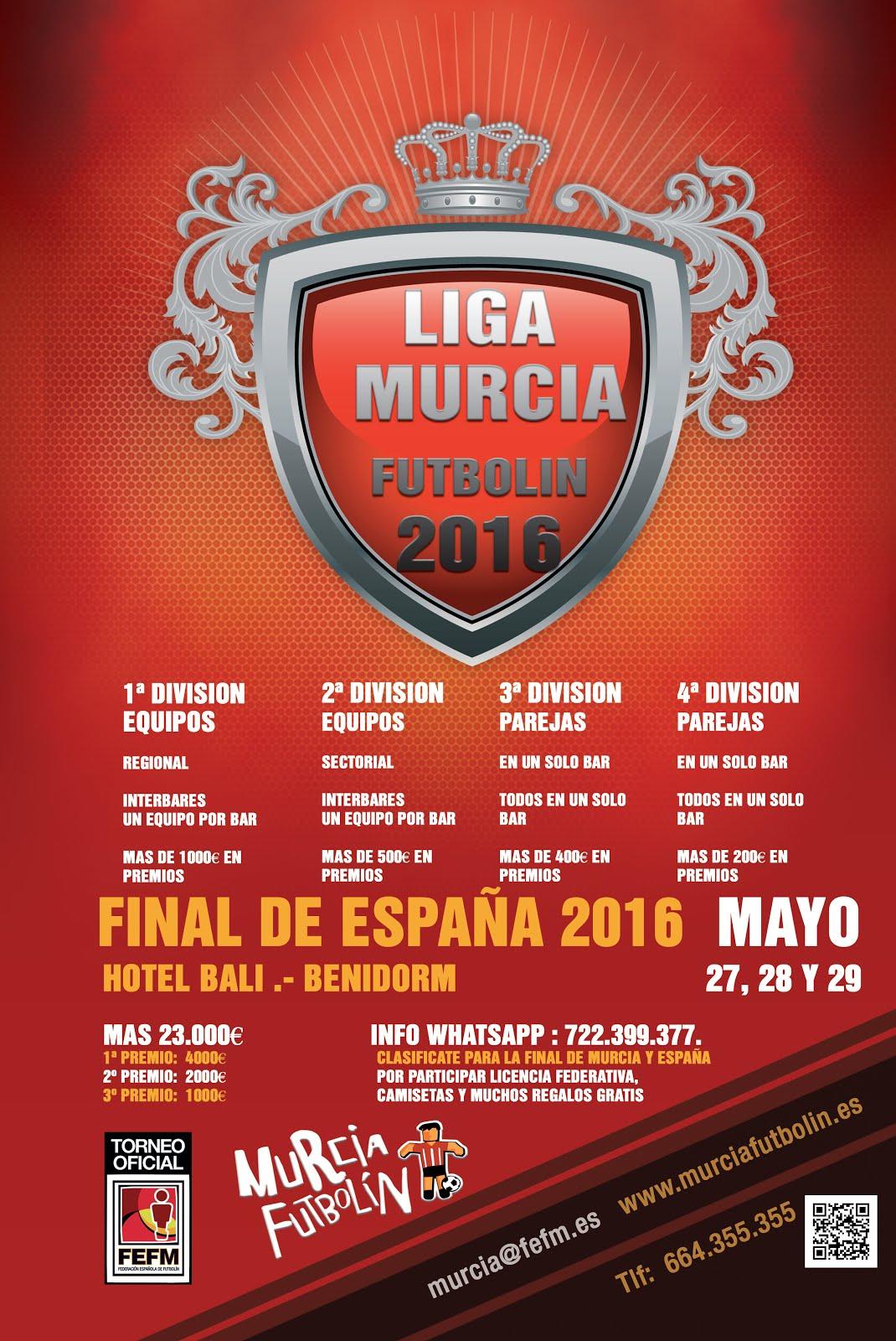 Ligas 2016