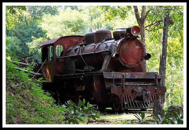 tren birmania locomotora abandonada