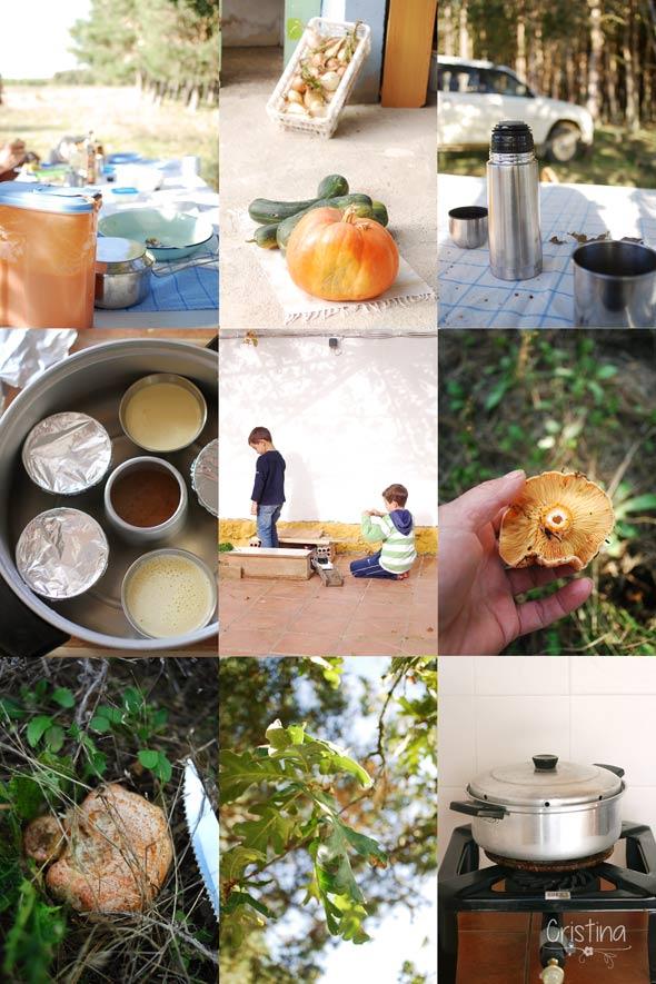 níscalos, niños, hojas de roble, calabazas, cazuela horno