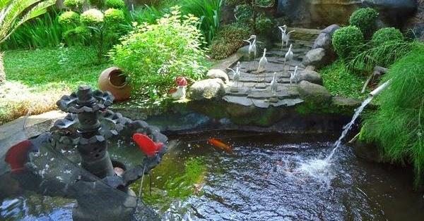 cara membuat kolam ikan minimalis cantik di rumah terbaru